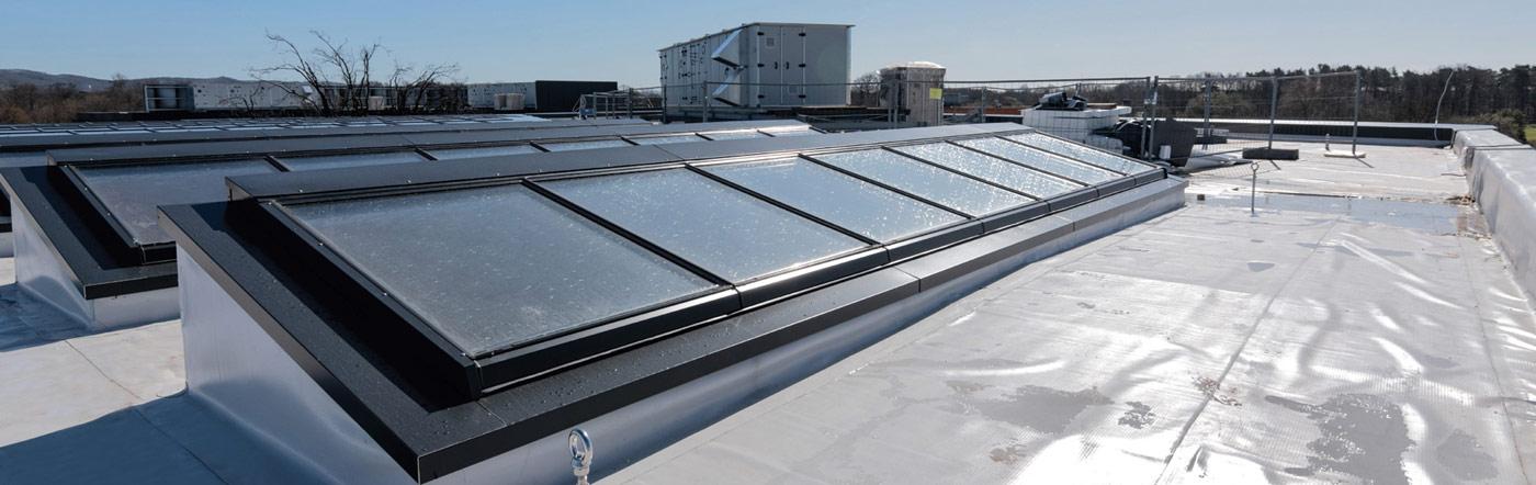 Pultdach-Fenster in Reihen auf einem Industriedach
